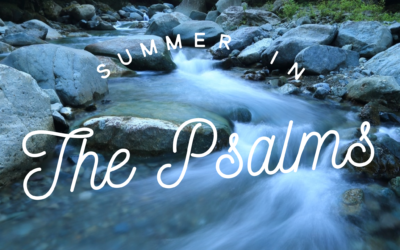 The Lord's Providence and Provision – Psalms 8